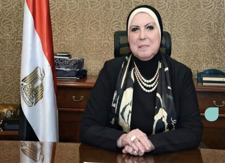 نفين جامع تصدر قرارا باشتراطات الإفراج عن السيارات الكهربائية