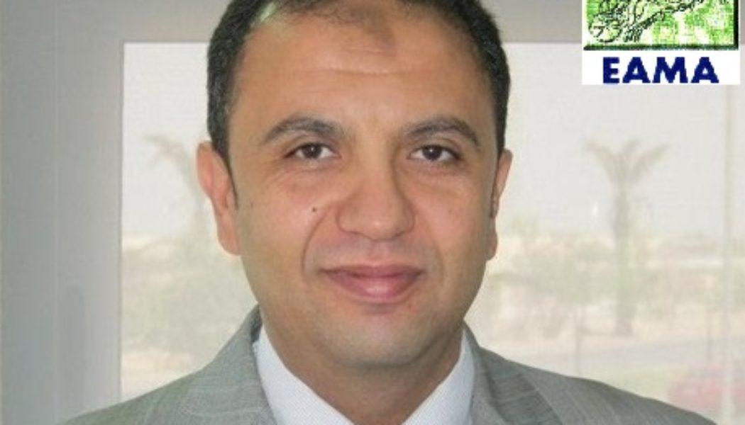 الصراع يشتعل بين مصنعى السيارات والحكومة المصرية قبل إقرار قانون إستراتيجية السيارات المرتقبة